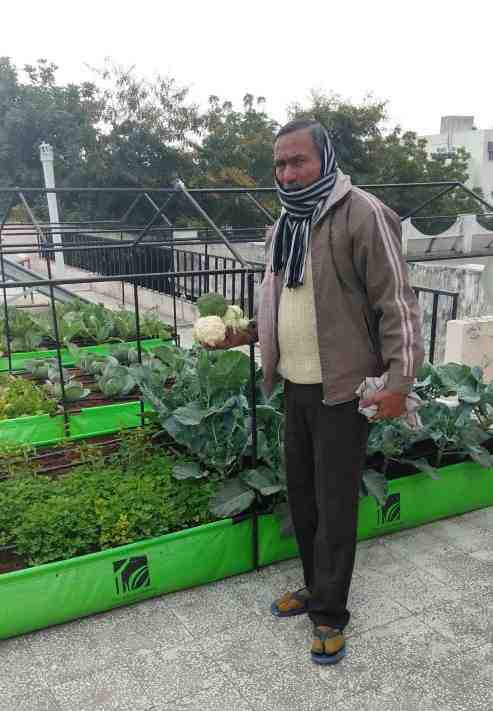 organic farming in jaipur